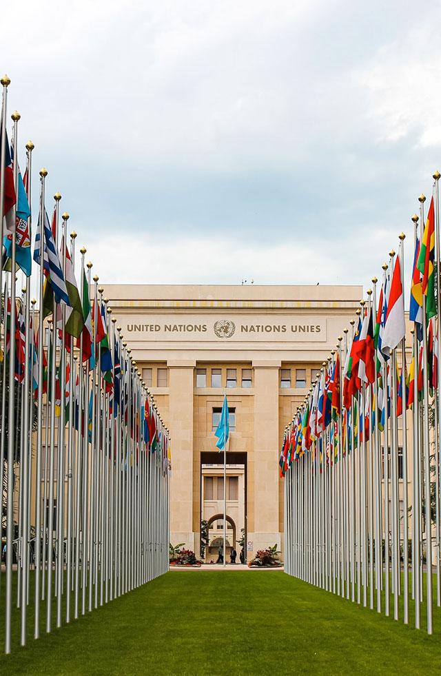 Asociación Dominicana de las Naciones Unidas (ANU-RD)